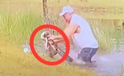Video: Hombre salva a su perrito de ser devorado por un cocodrilo