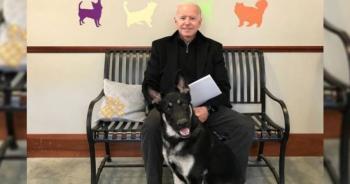Se lastima un tobillo el presidente electo de EE. UU. mientras jugaba con su mascota