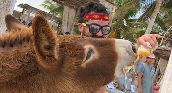 En Tulum, emborrachan a burrito como atractivo turístico de hotel
