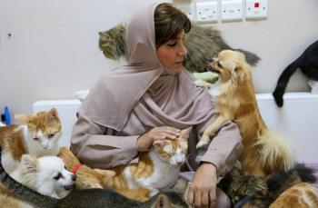 Mujer jubilada cuida casi 500 animales de la calle