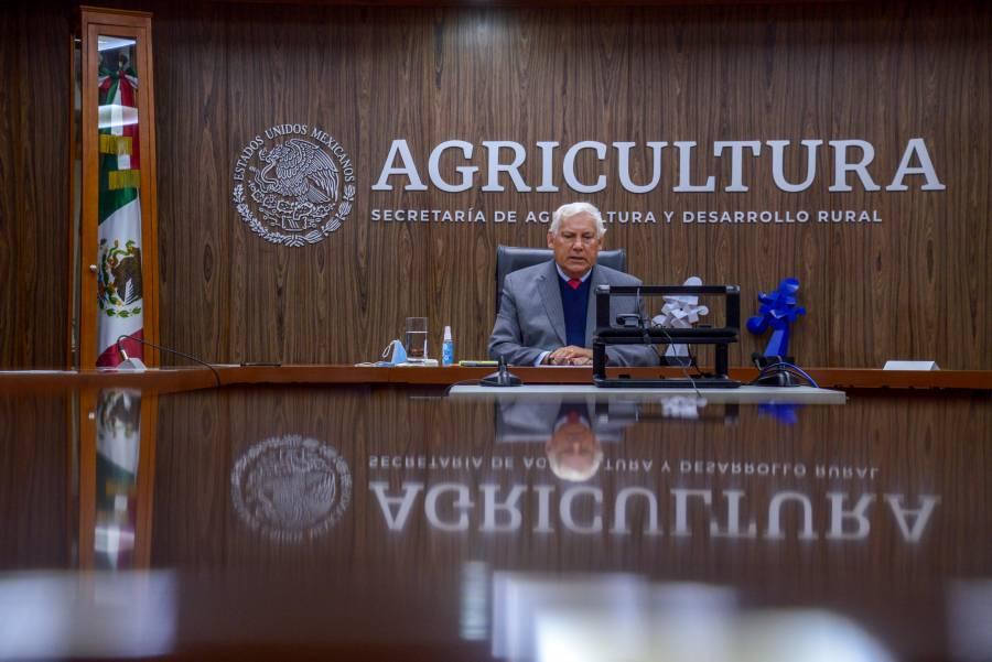 Secretaría de Agricultura fortalece atención en zonas áridas y semiáridas del país