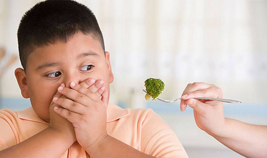 Recomendaciones para prevenir, tratar y revertir la obesidad infantil