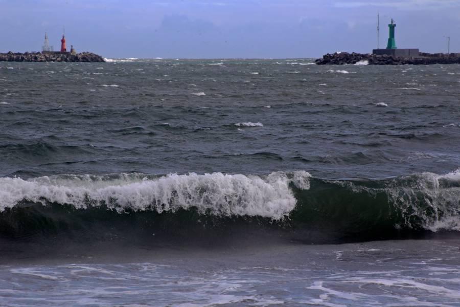 En puerto de Veracruz, fuertes vientos desprenden árboles y alzan olas por frente frío 23