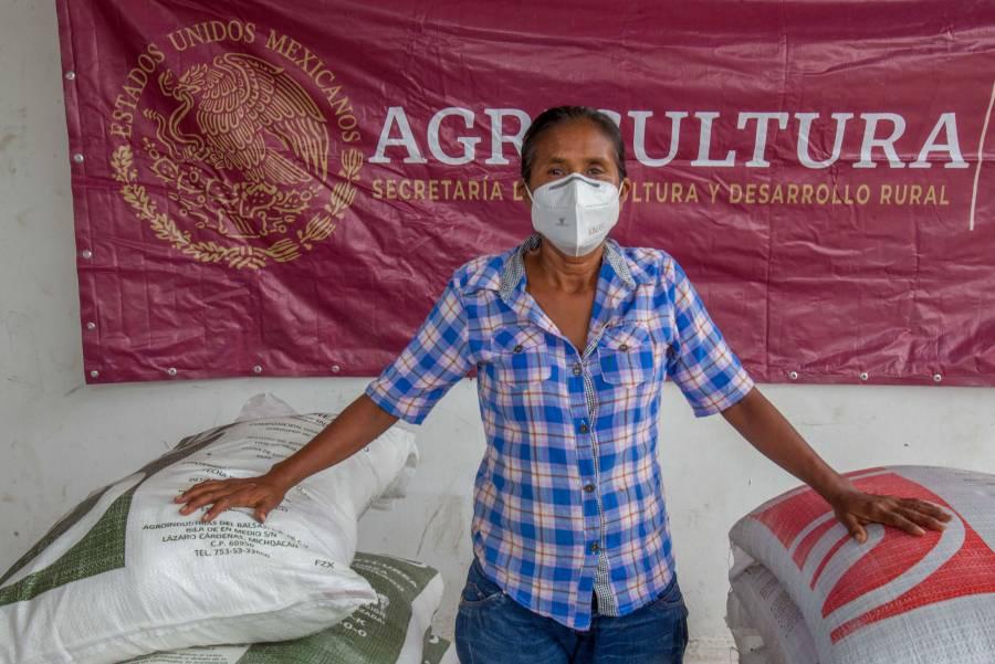 Más del 60% de los productores de maíz beneficiados del Bienestar en Morelos ya recibieron insumos