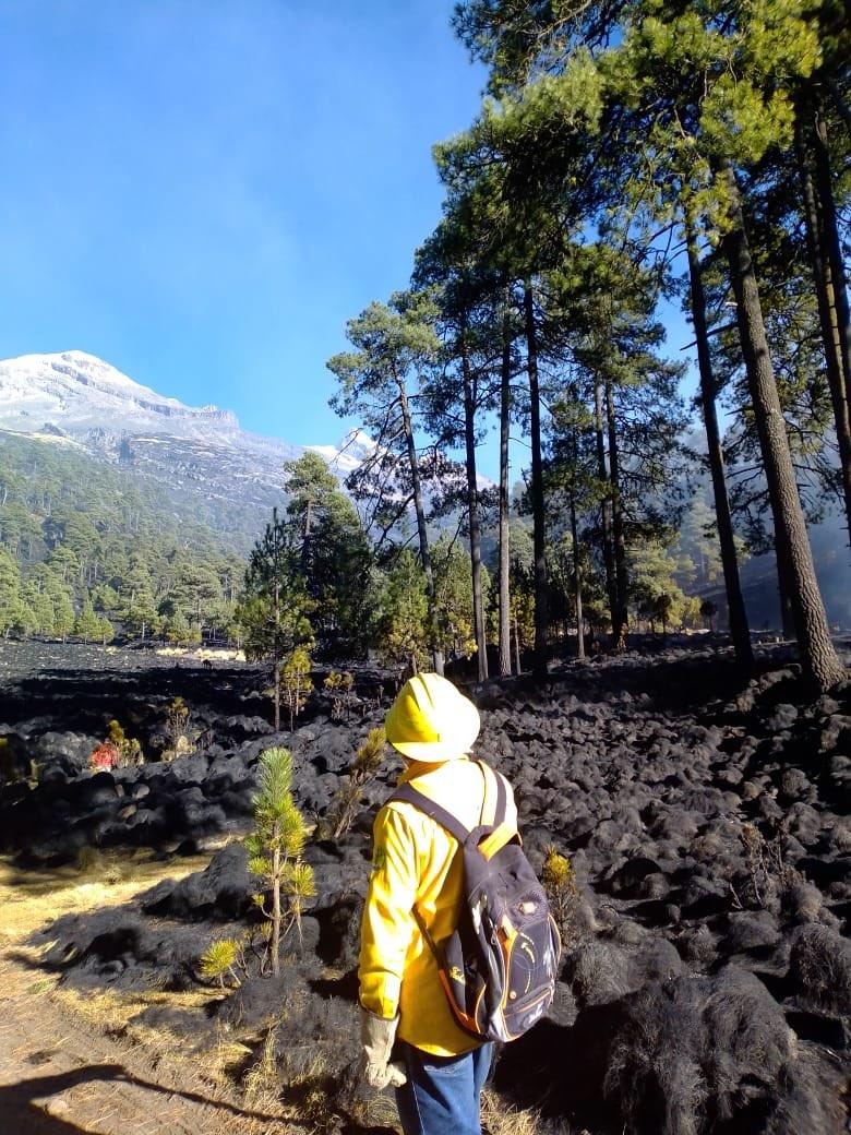 Controlan incendio en Parque Izta-Popo