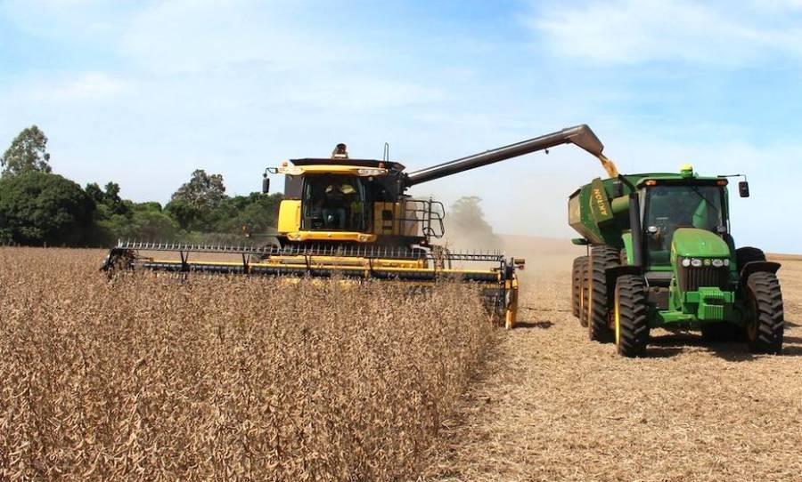 Exportaciones de granos de Ucrania caen a 26,4 millones toneladas