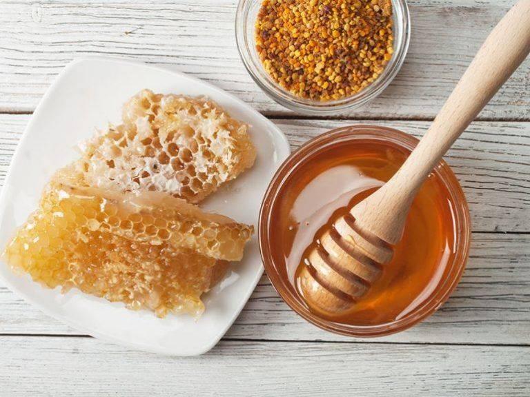 Reporta Agricultura crecimiento de las exportaciones de miel mexicana
