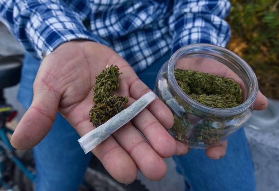 Publican reglamento final sobre uso medicinal del cannabis en México