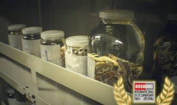 Documental que aborda la colección invaluable del Museo de Zoología obtiene premio internacional