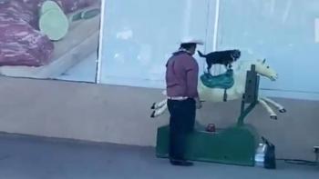 Video: Señor sube a su lomito a un caballito mecánico