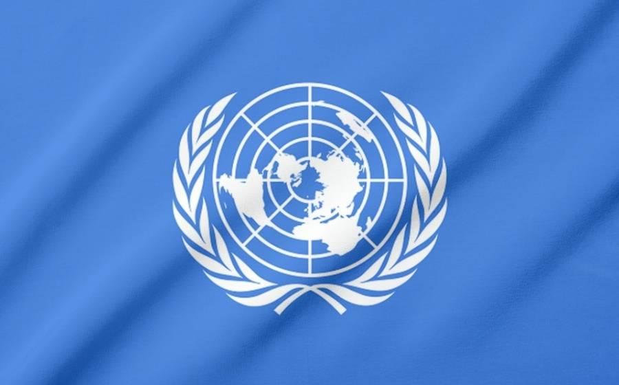 ONU: Pandemia es llamado de atención sobre debilidad en materia de alimentos