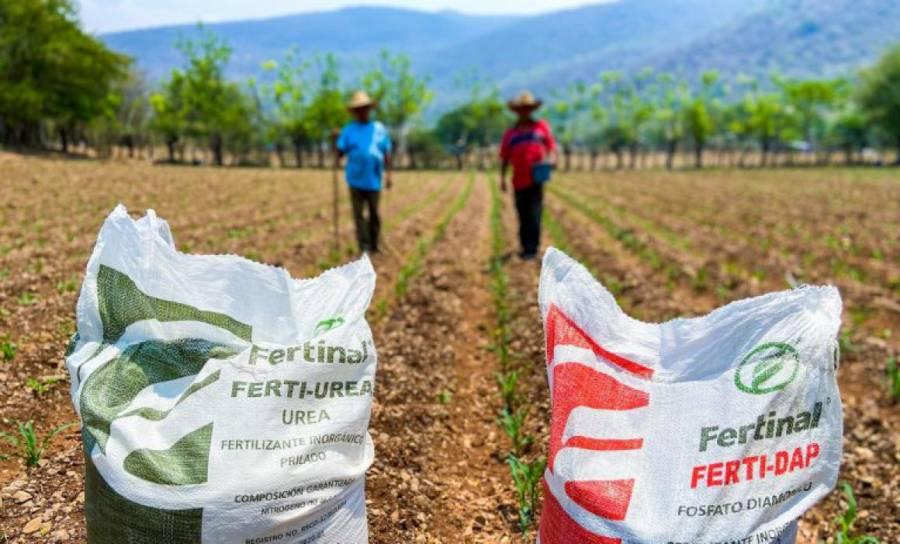 Inició la entrega de insumos del programa Fertilizantes para el Bienestar en Tlaxcala