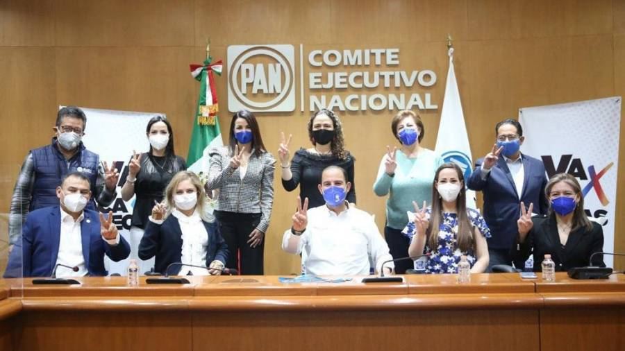 Fundamental la observación internacional en elecciones de junio: PAN