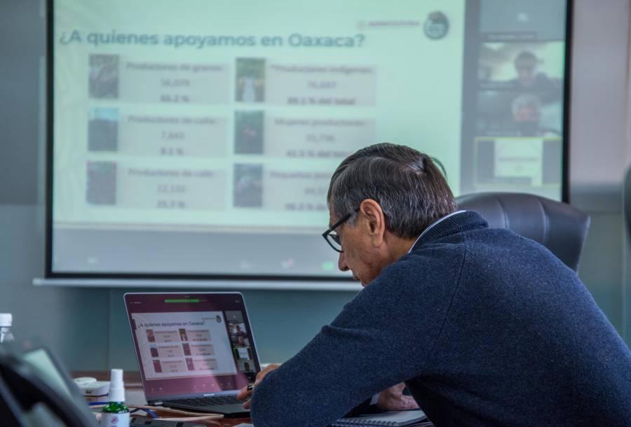 Más de 86 mil productores oaxaqueños reciben apoyos directos de Producción para el Bienestar