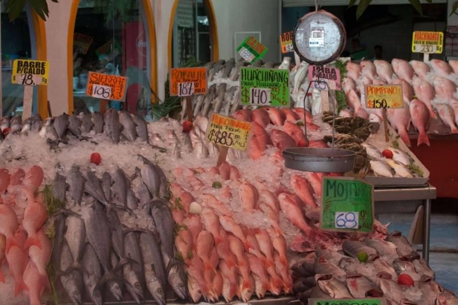 Agricultura: Garantizado el abasto de pescados y mariscos para la temporada de Cuaresma y Semana Santa 2021
