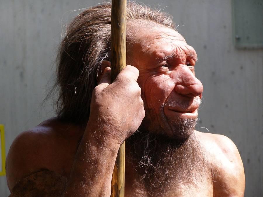 Genes neandertales ayudan a superar casos graves de Covid, según estudio
