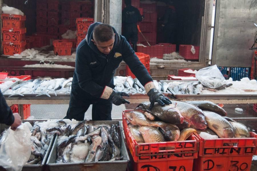 Garantizado, abasto de pescados y  mariscos para Cuaresma y Semana Santa