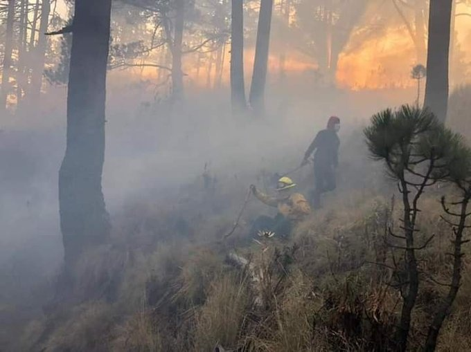 En el Nevado de Toluca continúa el incendio en predio de Tlacotepec