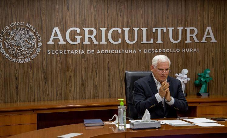 Impulsa Agricultura fortalecimiento de acciones de sanidad e inocuidad en el sector pecuario nacional