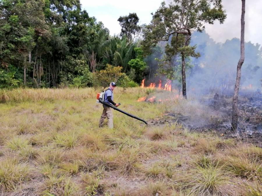 En Colombia, incendios forestales han consumido 10 mil 670 hectáreas