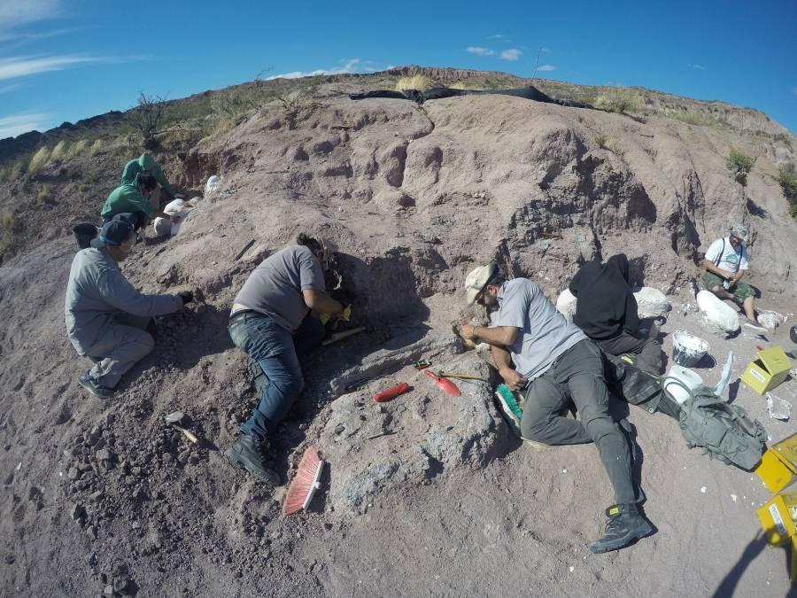 En Argentina se encuentra el titanosaurio más antiguo del mundo