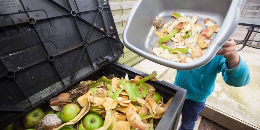 El 17% de los alimentos se desperdicia: ONU