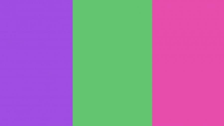 Este es el significado de los colores de la bandera feminista