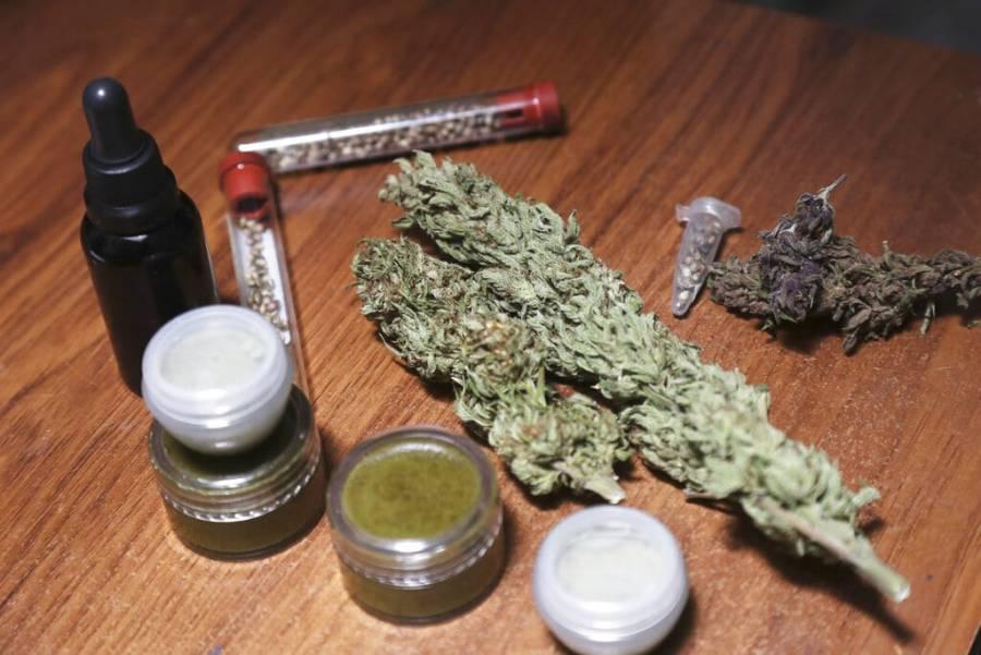 """Lo que están aprobando puede ocasionar un """"viaje"""" de cuatro días, argumentó diputada del PRI sobre marihuana"""