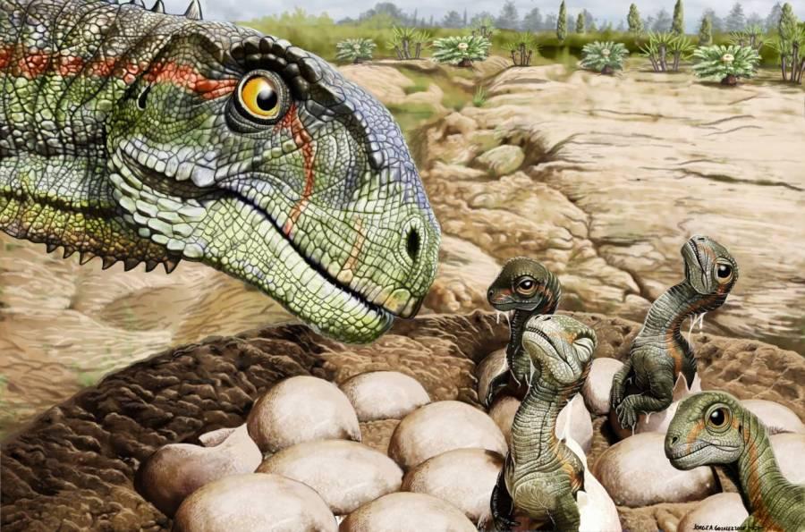 Descubren primer fósil de un dinosaurio incubando sus huevos