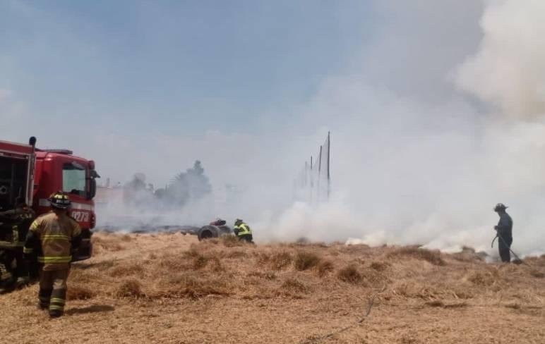 Reportan incendio en área de pastizal en la UAM Xochimilco