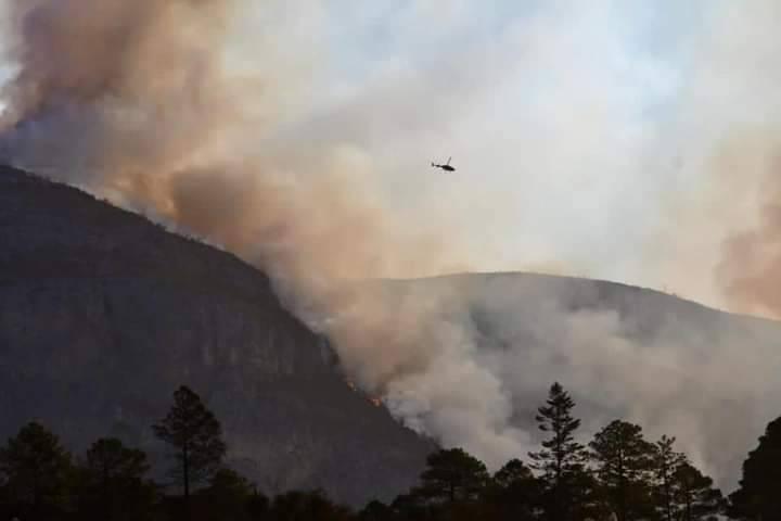 Fiscalía estatal investiga incendio forestal en Sierra de Arteaga, considerado desastre ecológico