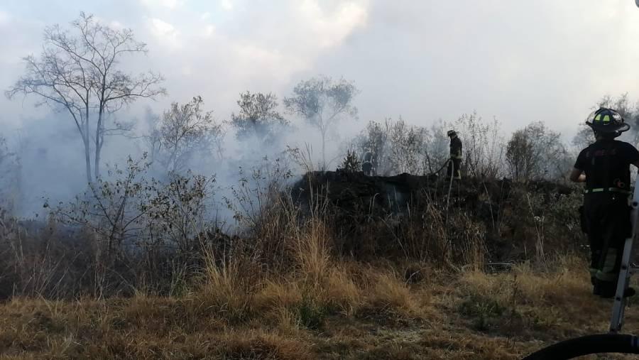 Se registra incendio forestal en Fuentes del Pedregal; reportan control al 98%