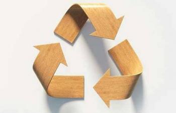 Científicos crean plástico biodegradable a través de los residuos de madera
