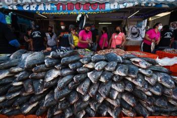 Sader: En cuaresma, habrá suficiente pescado y marisco