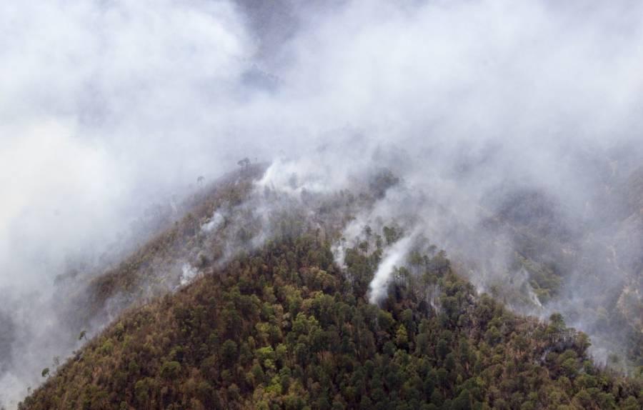 Nuevo León solicita declaratoria emergencia por incendios