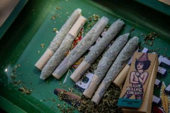 Regulación de cannabis busca atenuar la criminalidad: Ricardo Monreal