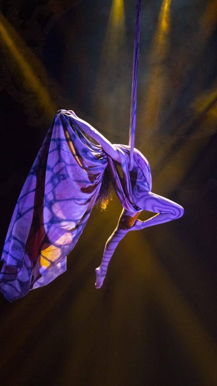 Circo Atayde Hermanos llegará al Teatro de la Ciudad Esperanza Iris