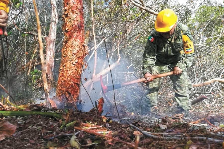 Piden desplegar Plan DN-III para mitigar incendios forestales