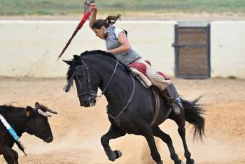 Por segundo año, suspenden la feria taurina en Sevilla