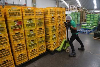Durante 2020, México creció en materia de exportaciones: OMC