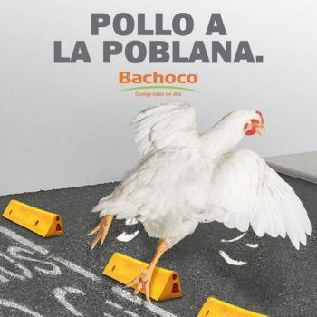 Bachoco: pollos al estilo poblano, también caerán… pero en tus platillos