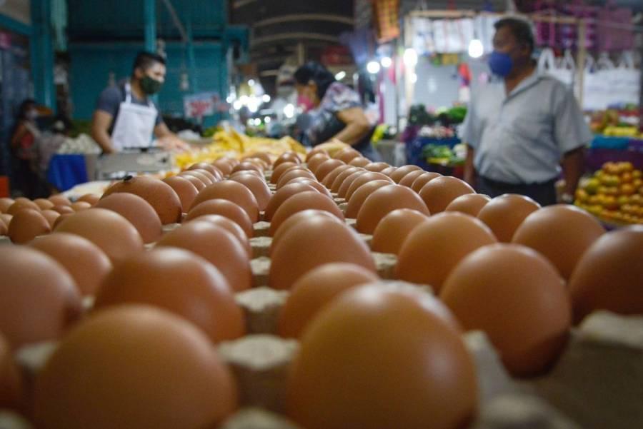¡Por los cielos! Precio del huevo ronda los 40 pesos en algunas regiones del país