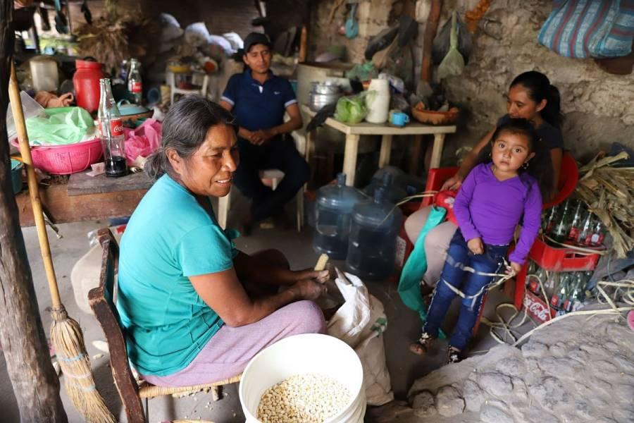 Población mexicana, la más afectada en materia económica por la pandemia: OCDE