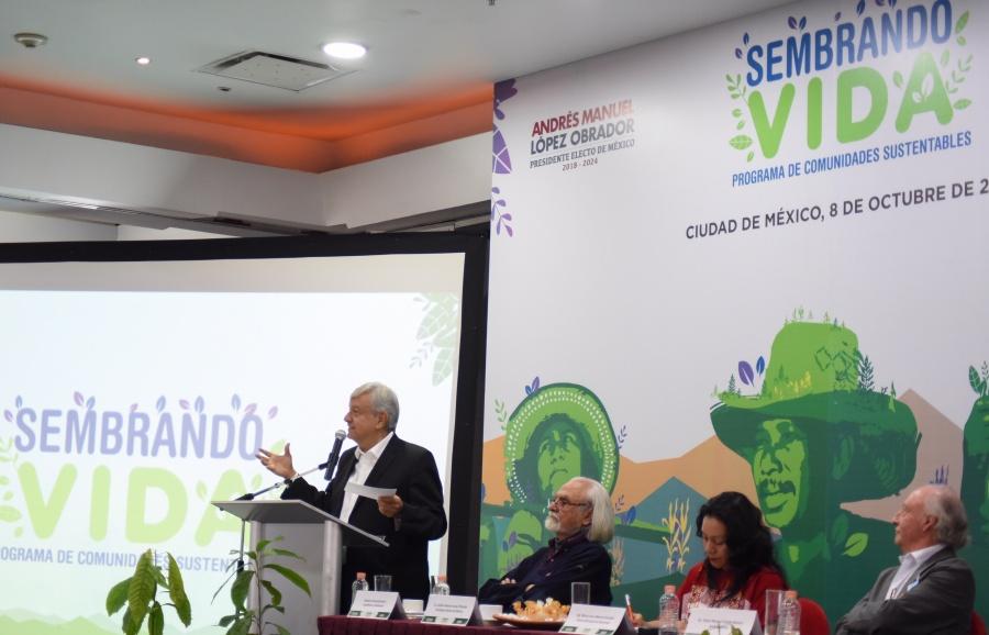 AMLO informa que atiende tema de falta de agua en Campeche a través de sembrando vida