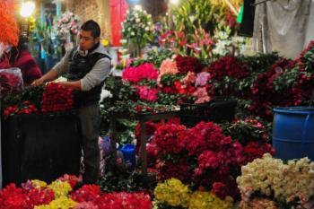 Prevén floricultores del Edomex, ventas de hasta por mil 300 mdp en el Día de las Madres