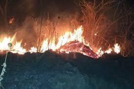 Se registra fuerte incendio en Michoacán y más en el país