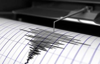 Sismo de magnitud 4.8 sacude a Guerrero