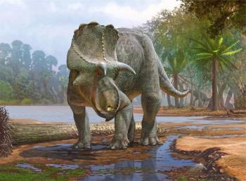 Descubren fósiles de dinosaurio que data de hace unos 82 millones de años