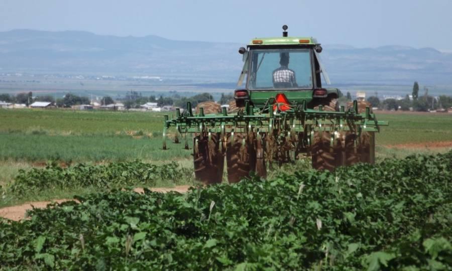 México pide a EEUU garantizar derechos de trabajadores migrantes del sector agrícola