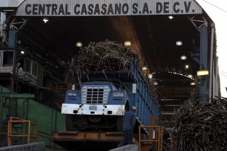 Ampliará EEUU exportación de azúcar mexicana